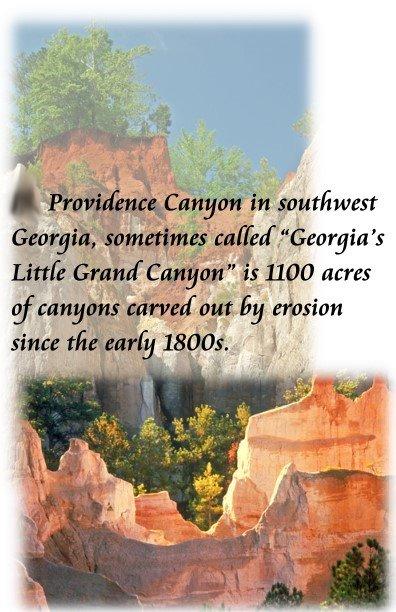 8 providence canyon